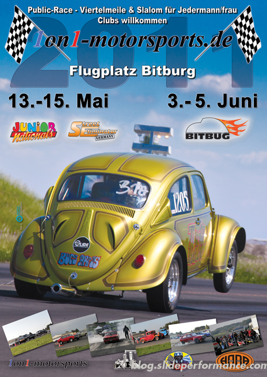 Poster-BirBurg-2011-Turtle-Slide-Performance